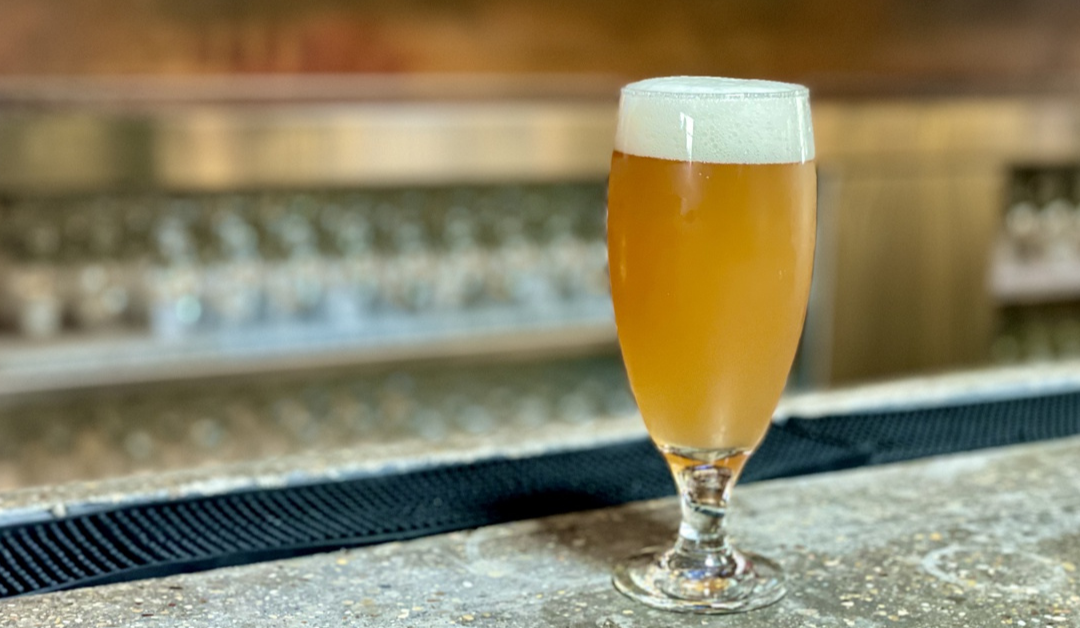 How to Create Instagram Reels for Your Brewery That People Want to Watch